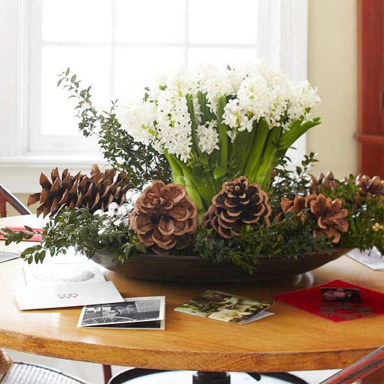Boini In Novoletni Cvetlini Aranmaji Predstavljamo